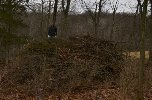 I am standing on top of the brush pile at the beginning of the weekend.