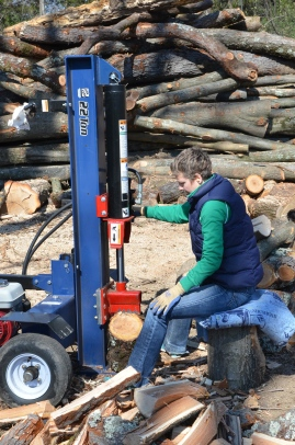 A wood splitter is the easiest way to crack the big logs.